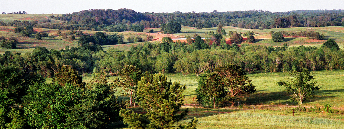East Texas Real Estate - Homes, Farms, Ranches, Land For Sale
